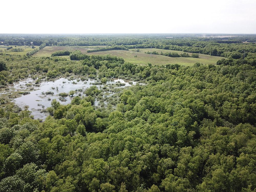 West Tennessee Wetland Mitigation Bank